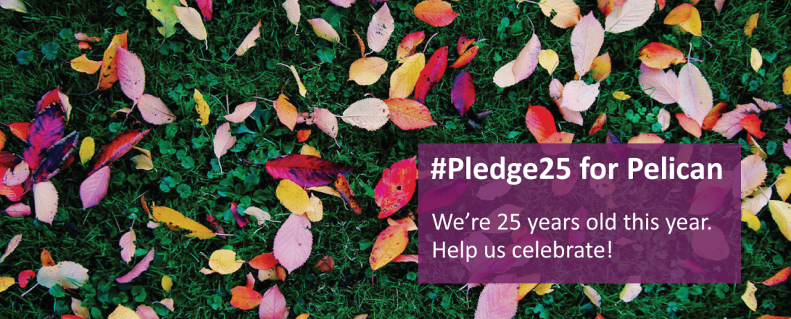#Pledge25 for Pelican Cancer Foundation to celebrate our 25th Anniversary